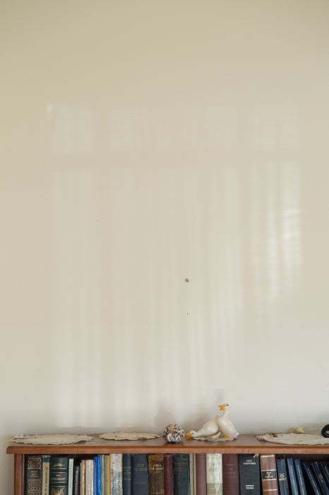 http://bryanhutchison.com/files/gimgs/th-8_livingroom-window-shadow_750.jpg